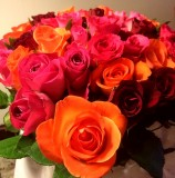 Mother's Day roses from the  Kates in Canberra