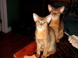 The first time I saw him... with his sister Minerva, who lives in Charlottetown, PEI