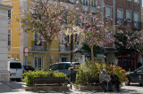 Praça de Bocage