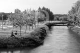 Soure e o Rio Anços