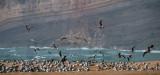 A Nazaré em 24 de dezembro de 2013