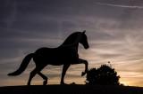 O Cavalo de Alter