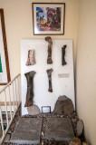 Membros Posteriores de Vários Dinossauros Carnívoros