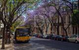 Avenida Dom Carlos I
