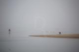 As Manhâs Sebastiânicas na Lagoa de Óbidos