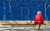 Th Blue Wall