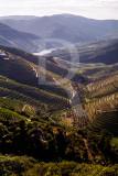 As Vistas do Douro