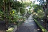 Lisbon University's Botanic Garden (MN)