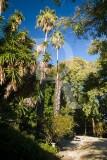 Jardim Botânico da Faculdade de Ciências (MN)