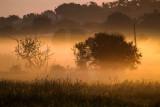 Algarve's Mystic Mornings
