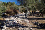 Alqueidão - Troço de Via Romana (IIP)
