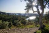 Vista para o Vale Manso