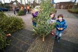 Kerstbomen Inleveren
