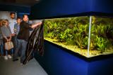 Onthulling aquarium Aqua Zoo Leerdam