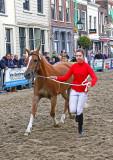 Paardenmarkt Vianen 2015