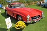 1959 Mercedes-Benz 300 SL Roadster, owners: Phil & Judy Fleck, Limekiln, PA (8785)