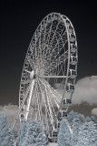 The York Wheel
