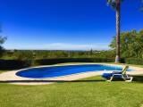 Pool Scene