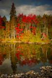 Fall Reflections...