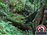 La Fortuna de San Carlos, Alajuela, Costa Rica Lots Land  For Sale - Rainforest Rivers Wildlife and a Volcano