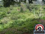 Penonome, Cocle, Panama Apartment For Sale - Raw land for Sale