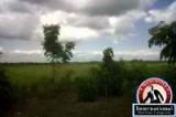 Daular, Guayas, Ecuador Farm Ranch  For Sale - Property near by Guayaquils New Airport
