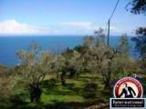 Agios Ioannis , Magnesia, Eastern Pelion, Mousesi-Zagora, Greece Lots Land  For Sale - Land at Eastern Pelion Close to Sea