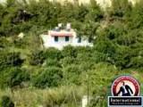Ierapetra, Lasithi Creta Island, Greece Apartment For Sale - Country Apartment