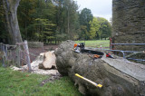 forestry & equipment
