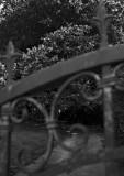 Mörk väg bakom låsta grindar