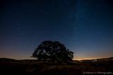 Milky Way & Star Trail