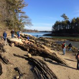 Wolfe's Neck State Park 1/1/15