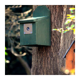 New nest boxes