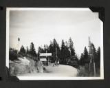 Norwegian Wood 12