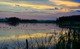 _DSC9441.jpg  Tine to Shoot a Sunset Photo