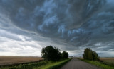 _DSC0470.jpg   Storm Just moved over Wetaskiwin