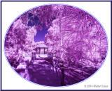 Infrared MS Park 1-15-14 (7) Gazebo2.jpg