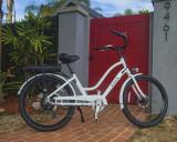 E-Lux Red Gate (3).jpg