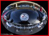 Corvette 1950s G WA DD.jpg
