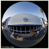 Corvette 1954 White WA Veterans Day 2016 (56).jpg