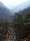 Myohyangsan (3).jpg