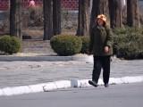 Pedestrian in Hyangsan.jpg