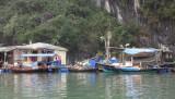 Houses in the floating village of Ha Long Bay, Vietnam