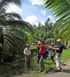 Stacy, Janet, Alan & Stan - crafts lessons using large palm tree leaves - on an island near My Tho in the Mekong Delta, Vietnam