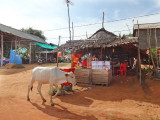 A small village - while traveling to Tonle Sap Lake, Cambodia