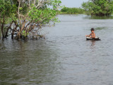 Boy boating in a metal cover in the flooded mangrove forest surrounding Tonle Sap Lake.