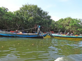 Boats emerging from the flooded forest next to the Tonle Sap Lake in the Siem Reap Province of Cambodia
