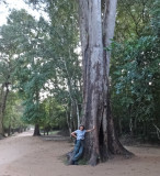 Judy next to a big tree at the entrance to the Ta Prohm Temple in Angkor, Siem Reap Province, Cambodia