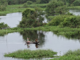 Fishermen in the flooded forest/wetlands next to Tonle Sap Lake - Siem Reap Province, Cambodia