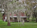 Rural house on a dirt back road in southwestern Louisiana
